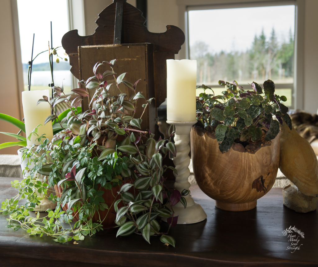 A smaller pot nestled on top of a bigger pot makes two sparse plants appear fuller.
